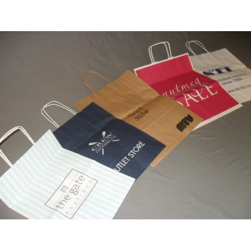 5ed6af97684b Kraft Paper Bag with Twisted Paper Handle (Printed 1 Colour)